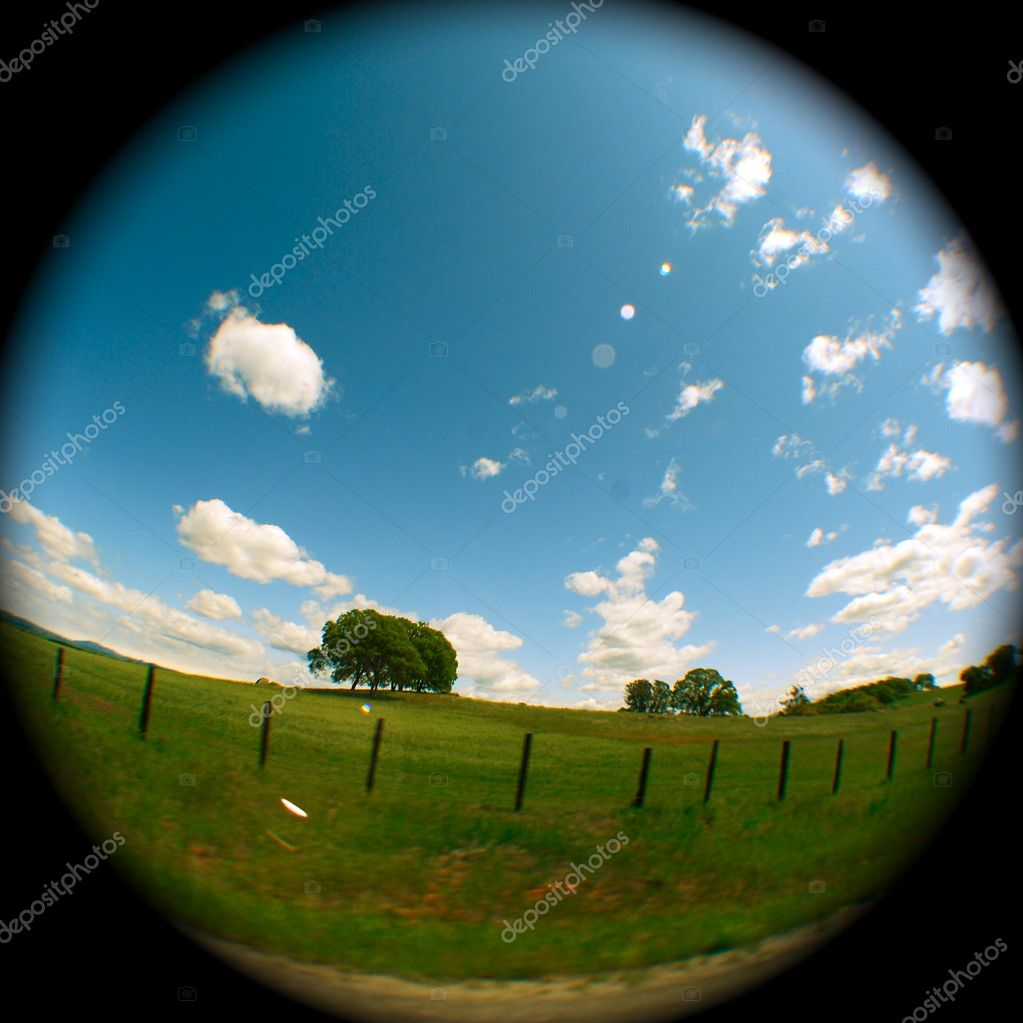 Sky, coulds, trees, fields... — Stock Photo #1523245