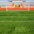 STADIUM - Football field with goal — Foto Stock