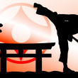 Stock Photo: MARTIAL ARTS - KARATE KYOKUSHINKAI