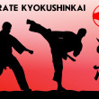 martial arts - karate kyokushinkai — Stock Photo
