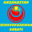 MARTIAL ARTS - KARATE SHINKYOKUSHINKAI — Stock Photo #1772848