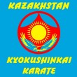 MARTIAL ARTS - KARATE KYOKUSHINKAI — Stock Photo #1772861