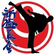 Stock Photo: MARTIAL ARTS - KARATE SHINKYOKUSHINKAI