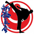 MARTIAL ARTS - KARATE SHINKYOKUSHINKAI - Stockfoto