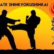 MARTIAL ARTS - KARATE SHINKYOKUSHINKAI — Stock Photo