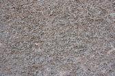Tekstura stary kamienny mur — Zdjęcie stockowe