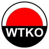 Dövüş sanatları - shotokan karate yapmak — Stok Vektör