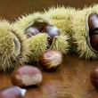 Chestnut still life - Stock Photo