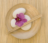 Orchid and white pebble — Stock Photo
