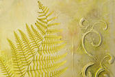 Pressed fern leaf — Stock Photo