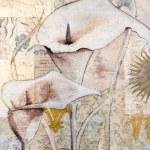 pintura do lírio de calla — Fotografia Stock  #1594369