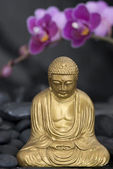 Buddha with Orchid — Stock Photo