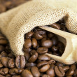 Coffee beans — Stock Photo #2277554
