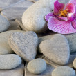 Stone heart and orchid — Stock Photo