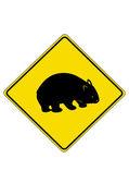 Wombat — Vector de stock