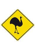 Emu — Stock Vector