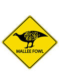 Mallee Fowl — Stock Vector