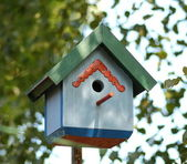 Colorful nest box — Stock Photo