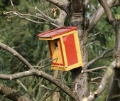 Colorful nesting box, hung in chestnut — Stock Photo