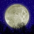 Moon and forest - Stock Photo