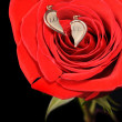 Broken gold heart in a red rose — Stock Photo #1532162
