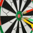 Board for darts. — Stock Photo