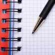 Notebook and pen — Stock Photo #2655415