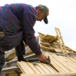 Stock Photo: Roofer