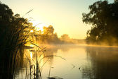Matutinal mist on river. — Stock Photo