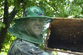 Beekeeper — Stock Photo
