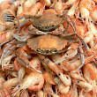 Crab and shrimps — Stock Photo