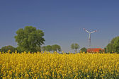 Wind power station with rape field — Stock Photo