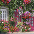 House with flowers, Brittany, France — Stock Photo