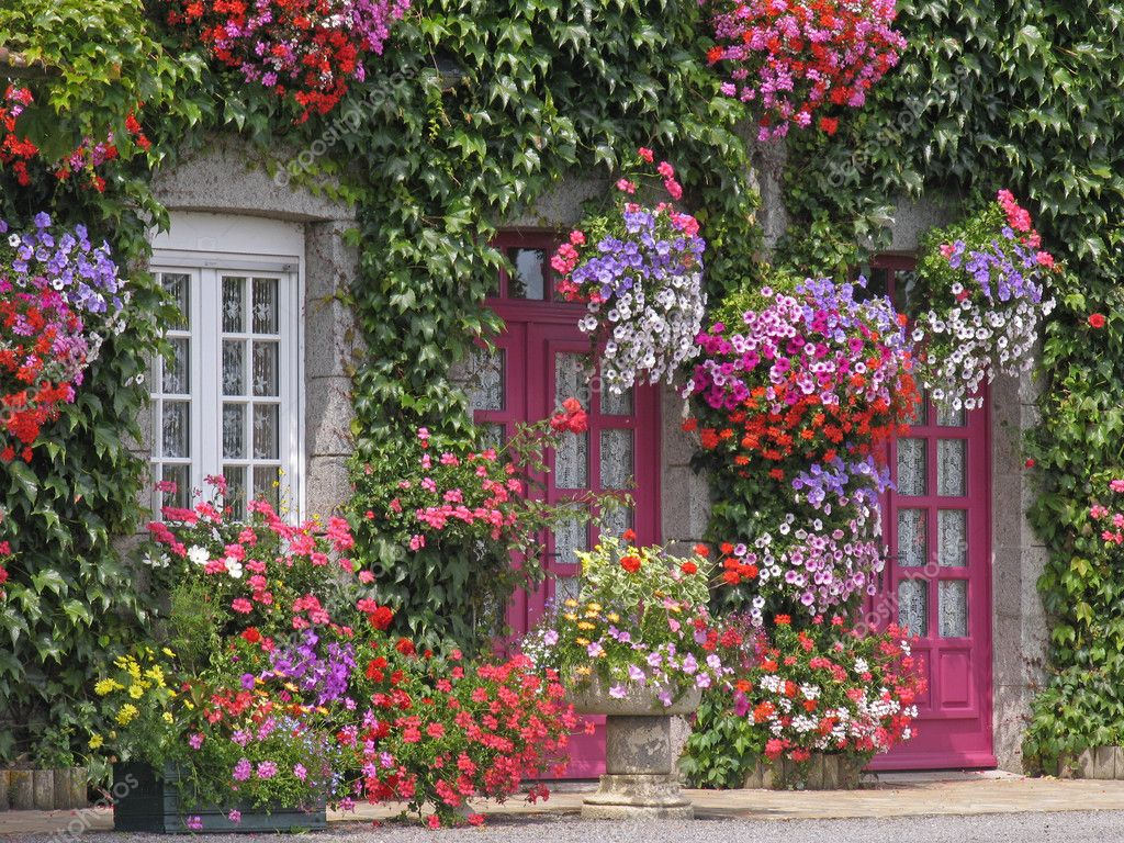 House with flowers brittany france stock photo for Classic house with flower garden