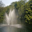 Pond with fountain in Germany — Stock Photo