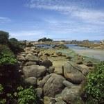 Rocky coastline, Brittany, France — Stock Photo #1748217
