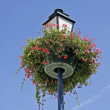 Lantern with flowers, Erdeven, Brittany — Stock Photo