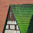 Stock Photo: Timbered house, Borgloh, Lower Saxony