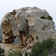 Stock Photo: Capo dOrso, Landmark, Sardinia