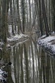 River Duete, Winter landscape in Germany — Stock Photo