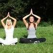 Two young women meditate in the nature — Foto Stock