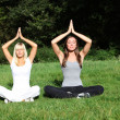 Two young women meditate in the nature — Foto de stock #1574962