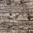 Stock Photo: Irregular background - Wood Structure