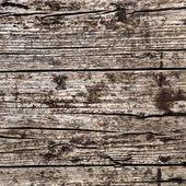 Irregular background - Wood Structure — Stock Photo