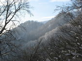 Winter in Carpathians Mountains — Stock Photo