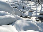 The winter magic — Stock Photo