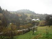 Rural landscape. — Stock Photo