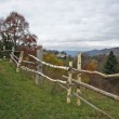Stock Photo: Rural fence.
