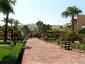Egipt — ストック写真