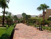 Egipt — Foto Stock
